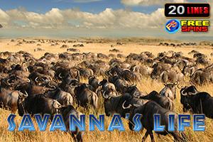 Savanna's Life