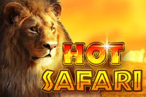 Hot Safari 50000